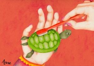5.schildpad